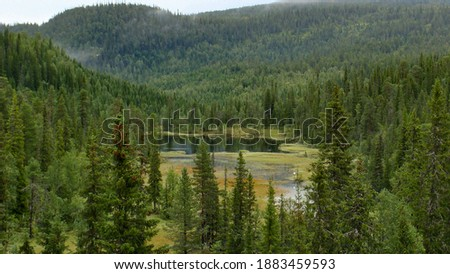 small lake sourrounded by fir tree forest in Swedish mountains Royalty-Free Stock Photo #1883459593