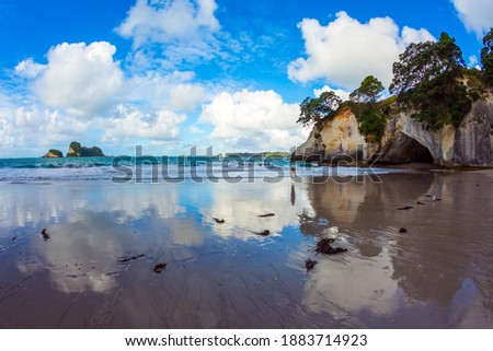 Travel to New Zealand. Ocean tidal wave in the Cathedral Cove. Mirror reflections of clouds in wet sand. The far end of the earth. The concept of exotic, ecological and photo tourism