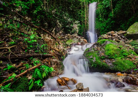 Hidden waterfall in a lush green tropical rainforest in the village of Maninjau, Sumatra, Indonesia.