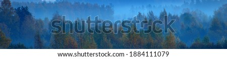 Forest in a fog at sunrise. Tree silhouettes in a mysterious blue light. Atmospheric landscape. Idyllic rural scene. Nature, seasons, environment. Concept art, fairy tale, magic. Panoramic aerial view Royalty-Free Stock Photo #1884111079
