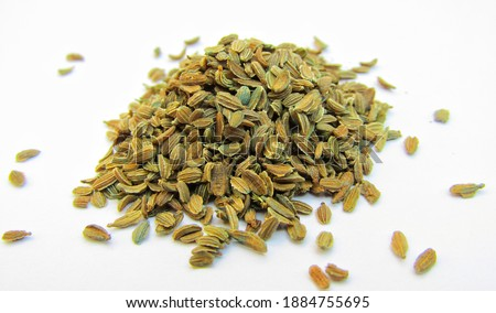 carrot seeds isolated on white background  Royalty-Free Stock Photo #1884755695