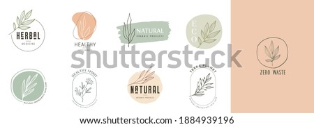 Collection of delicate hand drawn logos and icons of organic food, farm fresh and natural products, elements collection for food market, organic products promotion, healthy life and premium quality Royalty-Free Stock Photo #1884939196
