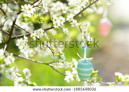 Close-up photo of multicolored easter eggs hanging on a branch of a blossoming apple tree during traditional egg hunt. Party for children in spring park on Easter day.