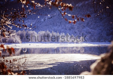 Idyllic winter landscape: Reflection lake, snowy trees and mountains Royalty-Free Stock Photo #1885697983