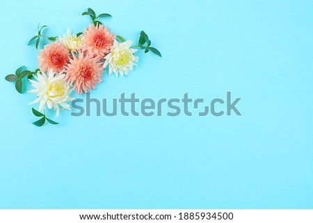 Abstract flower composition, spring background, minimal holiday concept, postcard. Congratulations to mothers day, womens day, happy birthday, wedding, place for text, flat lay