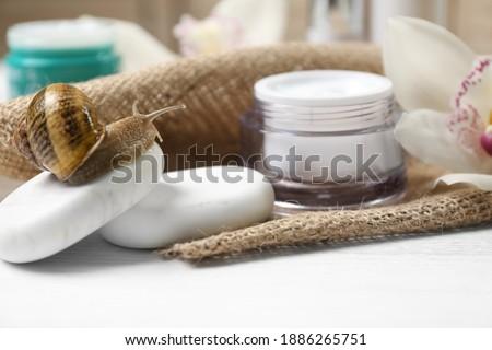 Snail, spa stones and cream on white table, closeup Royalty-Free Stock Photo #1886265751