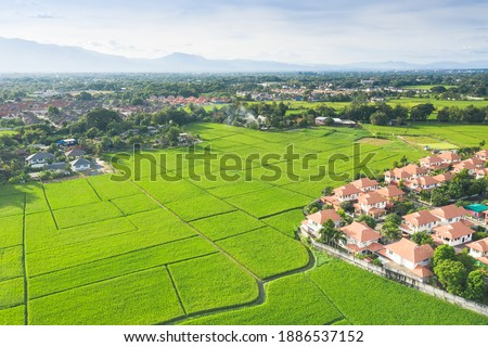 Housing subdivision or housing development. Also call tract housing consist of house and construction site in large tract of land that divided into smaller. Business process by developer and builder. Royalty-Free Stock Photo #1886537152