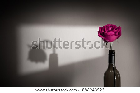 Lonely and Sadness Feeling. Mental Health Disorder in Relationship Concept. Pink Languish Rose Flower Shading Shadow on the Wall. Symbol of  Love and Valentines Day Royalty-Free Stock Photo #1886943523