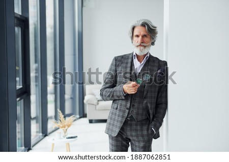Standing in the room. Senior stylish modern man with grey hair and beard indoors. Royalty-Free Stock Photo #1887062851