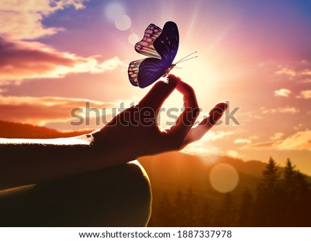 Close up of a hand in a meditation pose and butterfly. Sunset in the mountains. Royalty-Free Stock Photo #1887337978