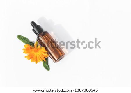 Natural calendula oil in a small bottle with a dropper. Calendula flower. Calendula. White background.