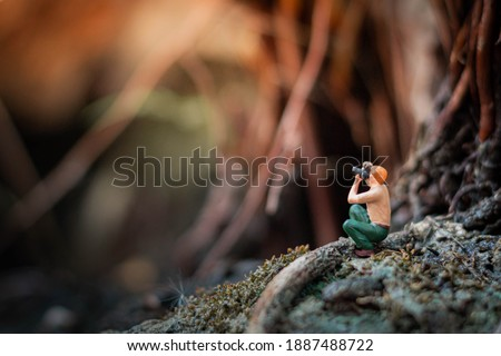 Miniature : photographer taking a photo of nature in the tropical forest.