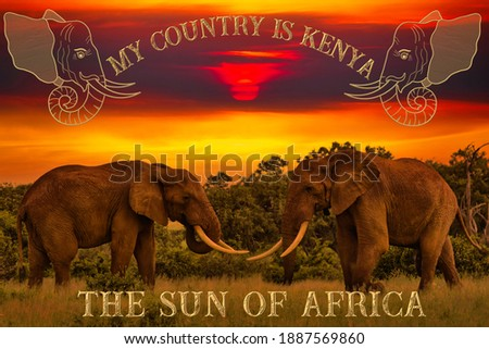 Beautiful pictures of Africa sunset and sunrise with elephants