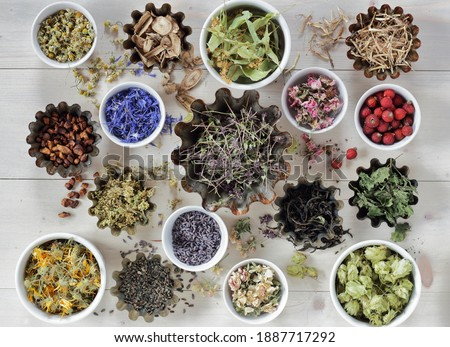 Assortment of dried herbs: blossom, root and seed, flat on the table, lavender, chamomile, lime, rose, cornflower, meadowsweet, thyme and others overhead top view, naturopathy and medicine concept Royalty-Free Stock Photo #1887717292