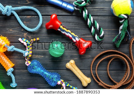 Dog feeding and care concept background. Pet care and training concept. Toys, balls, bones, collar, leash for playing and training Royalty-Free Stock Photo #1887890353