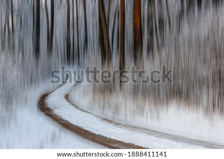 Pine forest, tree trunks on a winter day. The natural rhythm of tree trunks and shrub branches. A winding forest trail leads through the snowy forest. Blurred background. Latvia Royalty-Free Stock Photo #1888411141