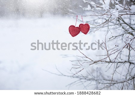 two red textile hearts hang on a tree branch in a snowy forest, valentine's day background, a symbol of love and happiness
