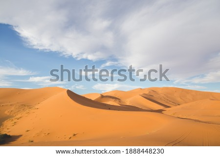 Shadow and light over the desert sand dune landscape of Erg Chebbi near the village of Merzouga in southeastern Morocco. Royalty-Free Stock Photo #1888448230