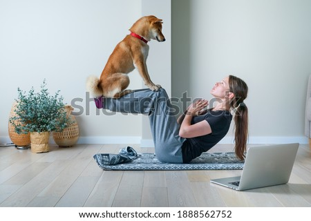 Doga or Doga yoga is the practice of yoga as exercise with dogs. Young woman in yoga position balancing with her dog. Home online training with a pet Royalty-Free Stock Photo #1888562752