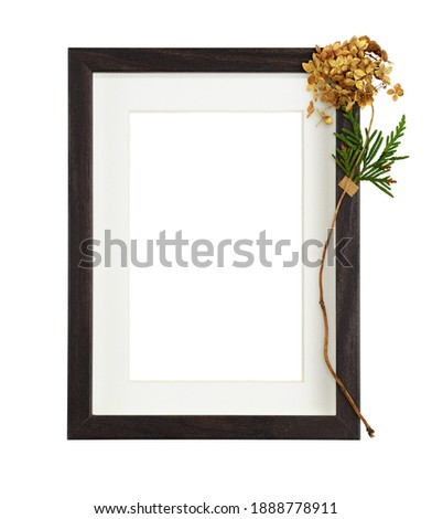 Dark brown wooden rectangle frame with white passe-partout and dry golden hydrangea flower isolated on white background. Mock-up.