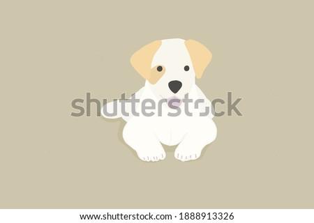 Drawing illustration White Puppy dog.