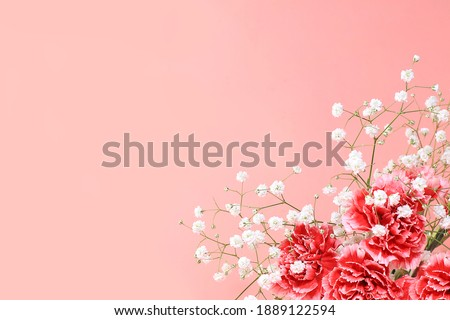 Abstract floral composition, spring background. Carnations on pink background, minimal holiday concept. Postcard for womens day or mothers day, happy birthday, wedding, banner for the screen,