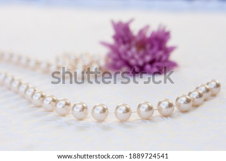 Close up picture of beautiful pearl beads necklace, blurred purple flower on the background, white background