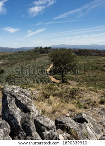 View from the Castro area on the trail Spring of Este River, with its arranged stones in the foreground. Este São Mamede, Braga, Portugal. #1890339910