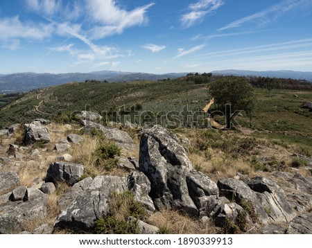 Overview from the Castro area on the trail Spring of Este River, with its arranged stones in the foreground. Este São Mamede, Braga, Portugal. #1890339913
