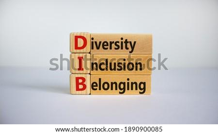 DIB, Diversity, inclusion and belonging symbol. Wooden blocks with words 'DIB, diversity, inclusion and belonging' on beautiful white background. Business, diversity, inclusion and belonging concept.