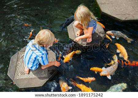 Happy kids walk with fun by pond stepping stones, feeding golden koi fishes in Tirta Gangga garden with natural water pools. Culture, arts of Bali, popular travel destination in Indonesia. Royalty-Free Stock Photo #1891175242