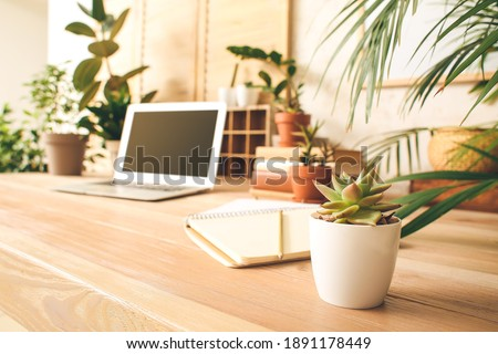 Comfortable workplace with modern laptop and green houseplants Royalty-Free Stock Photo #1891178449