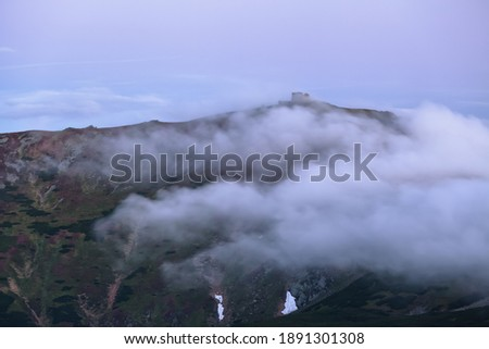 Sunrise. Spring scenery in foggy day. Panoramic view in lawn are covered by pink rhododendron flowers. Beautiful photo of mountain landscape. The old observatory.