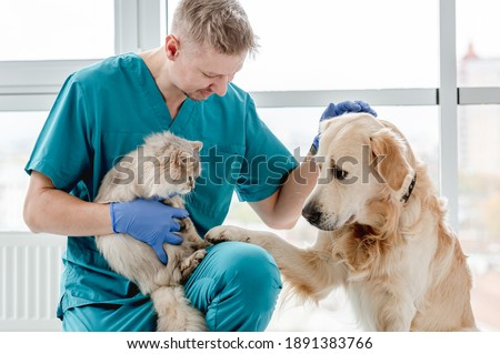 Vet with dog and cat in clinic Royalty-Free Stock Photo #1891383766
