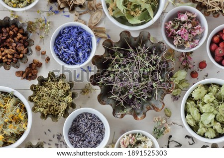 Assortment of dried herbs: blossom, root and seed, flat on the table, lavender, chamomile, lime, rose, cornflower, meadowsweet, thyme and others overhead top view, naturopathy and medicine concept Royalty-Free Stock Photo #1891525303