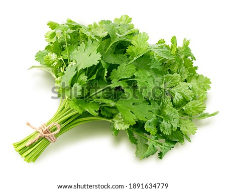 Coriander leaves isolated on white background, clipping path, full depth of field Royalty-Free Stock Photo #1891634779