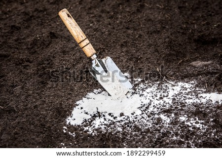 Gardener mixing dolomitic limestone powder in garden soil to change the pH ant to provide more nutrients for plants concept. Royalty-Free Stock Photo #1892299459