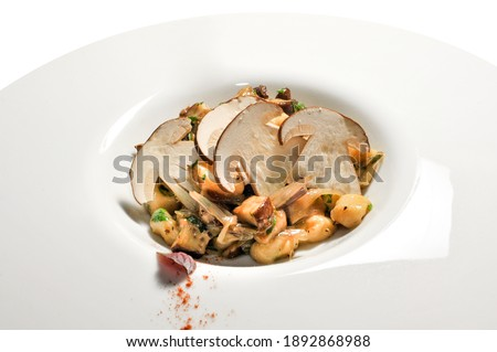 Gnocchi with porcino mushroom sauce in white plate with beautiful sectional slices of mushrooms #1892868988