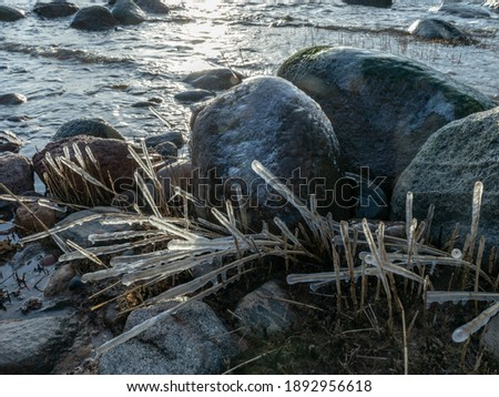 sea and wind made abstract formations of frozen dry reeds, icy rocks on the beach Royalty-Free Stock Photo #1892956618