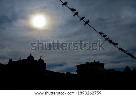 Istanbul, Turkey - November 28, 2012: Silhouettes in Büyükada-nizam #1893262759