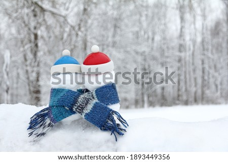 two snowmen in red and blue hats, wrapped in a knitted scarf against the background of a winter landscape. to be friends together is warmer Royalty-Free Stock Photo #1893449356