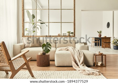 Modern interior of open space with design modular sofa, furniture, wooden coffee tables, plaid, pillows, tropical plants and elegant personal accessories in stylish home decor. Neutral living room. Royalty-Free Stock Photo #1894377529