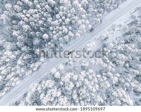 Forest in snow. Snowy forest road. Forest road from above Royalty-Free Stock Photo #1895109697