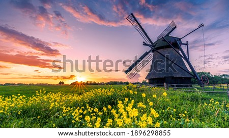 Water scoop mill in east friesland north germany, Traditional windmill in the sunset on a field Royalty-Free Stock Photo #1896298855