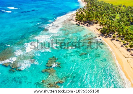 Tropical summer beach with coconut palm trees background. Aerial drone idyllic turquoise sea vacation background. Dominican Republic Royalty-Free Stock Photo #1896365158