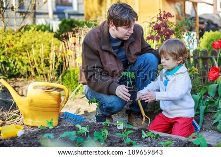 Young father and his little adorable son planting seeds and seedlings in vegetable garden, outdoors #189659843