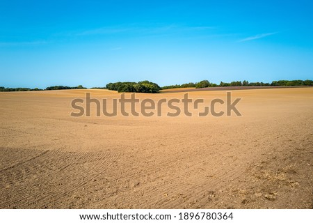 an extensive arable area, newly sown, in mecklenburg western pomerania. bushes and a blue sky on the horizon Royalty-Free Stock Photo #1896780364