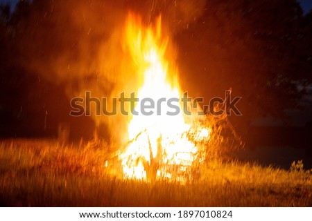 Big beautiful bonfire in the night forest in the holiday bath. Tourism and recreation in the forest against the background of the night sky