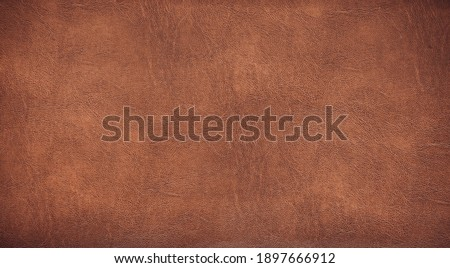 light brown background for decorations and textures Royalty-Free Stock Photo #1897666912