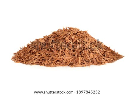 Cats claw bark herb used in herbal medicine to treat viral infections, peptic ulcers, gastritis, hemorrhoids, peptic ulcers and can boost the immune system. Uncaria tomentosa. Royalty-Free Stock Photo #1897845232